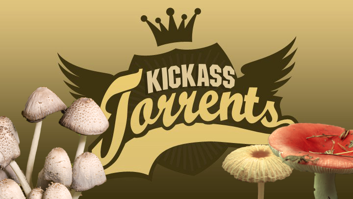 Photo of the storm surrounding the closure of KickassTorrents continues