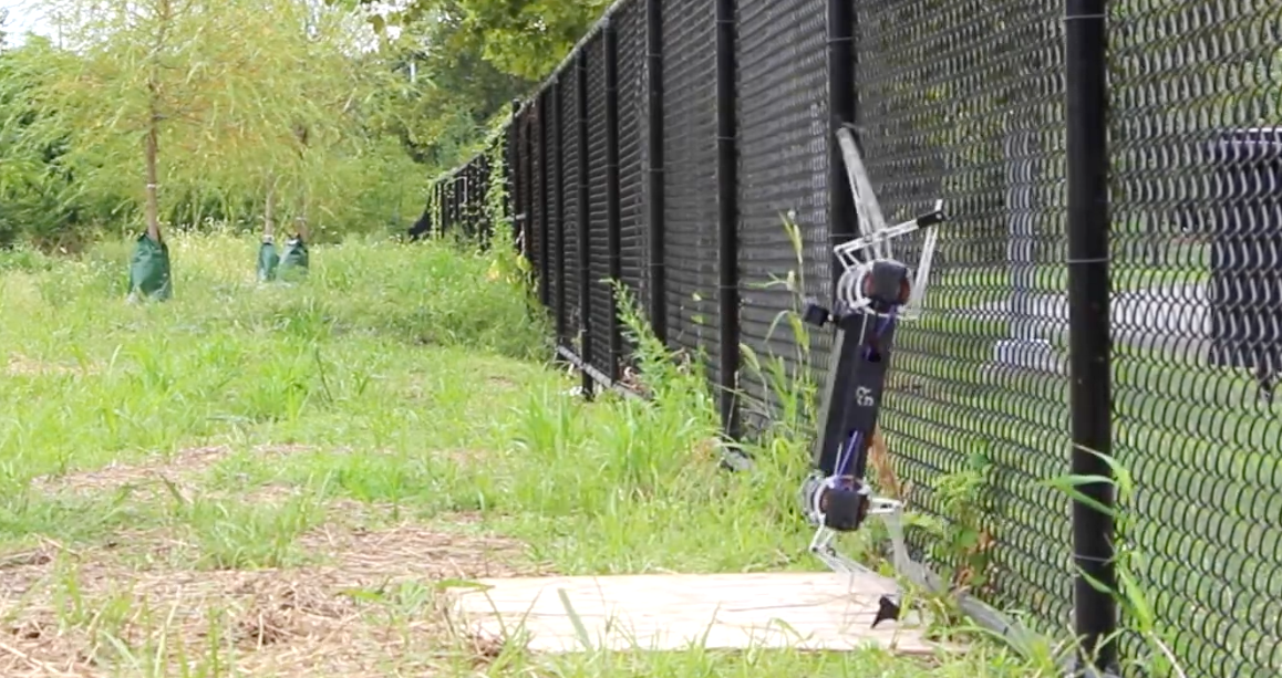 Photo of Watch: The bouncing robot that will occupy you