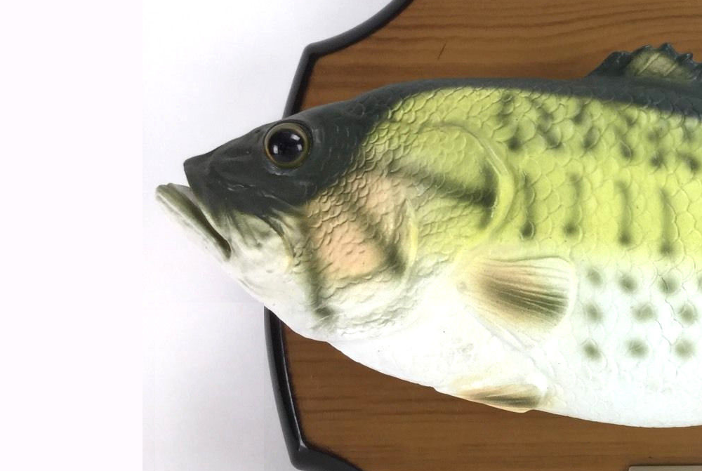 "Photo of Emerald of the Year: Amazon's Smart Assistant ""Transplanted"" with a Singing Fish"
