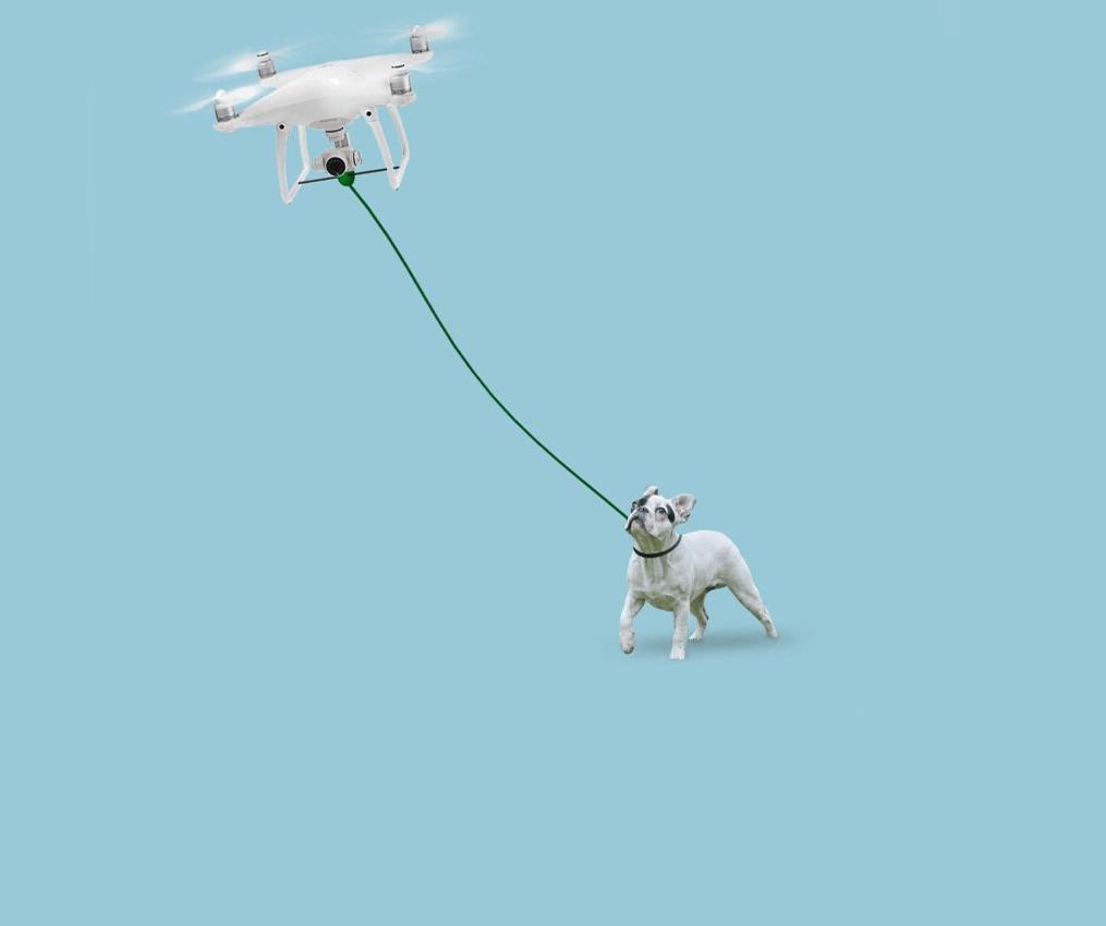 Photo of הרחפן שרצה לחסוך מכם טיולים עם הכלב נגנז