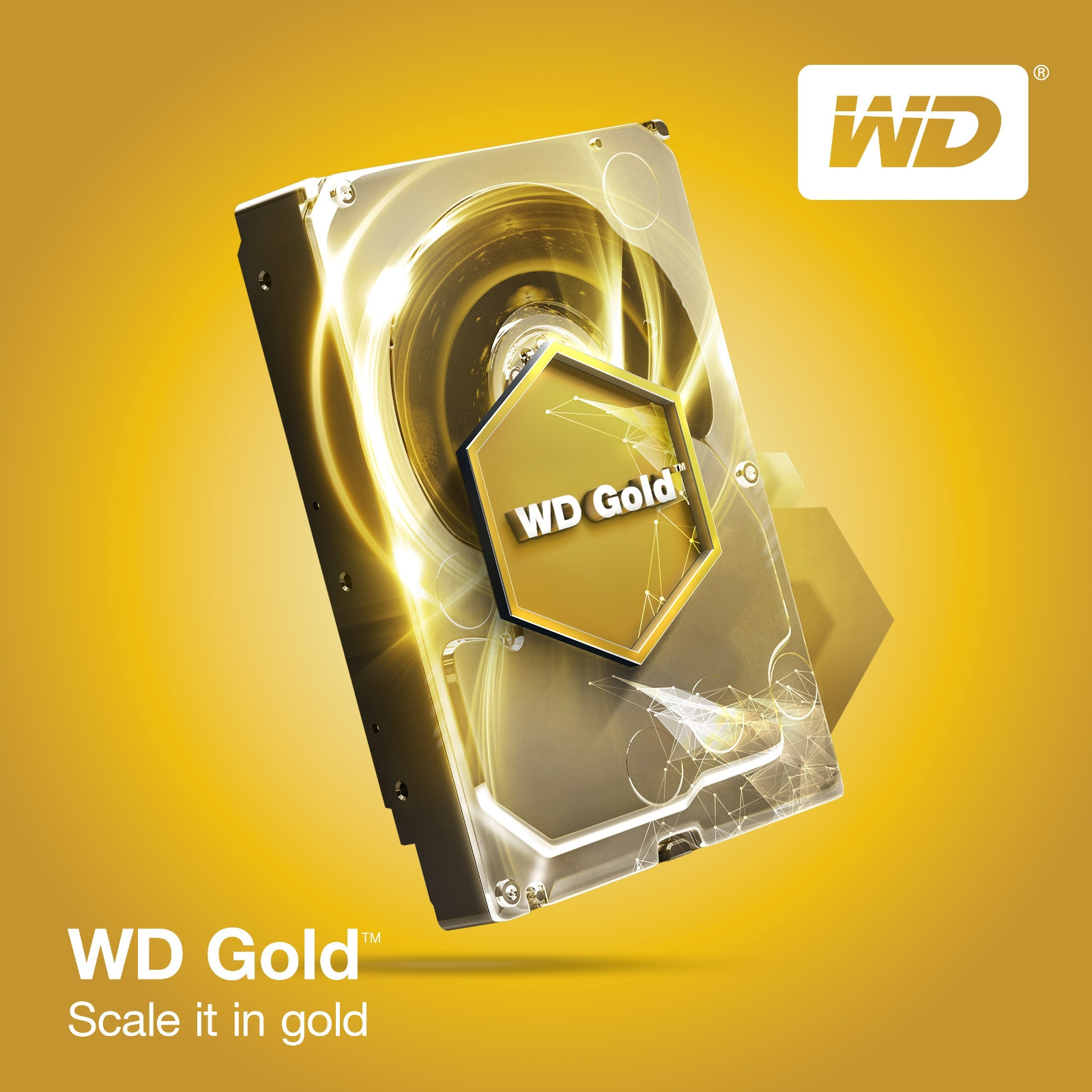 Photo of Golden Drive: Western Digital Launches New Hard Disk 12 Terabytes