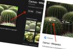 גוגל מכריזה: שינוי מפתיע במסגרת המאבק בהפרת זכויות היוצרים