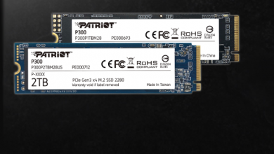 Photo of different colors, different hardware, single price: New budget NVMe drives from Patriot
