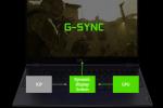 עוד חידוש מ-NVIDIA: מסכי G-Sync מתקדמים בדרך להרבה יותר מחשבים ניידים